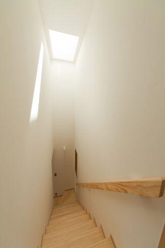 階段室上にも天窓