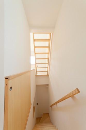 光りを通す階段